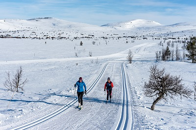 Cross-Country Skiing at Venabu Norway
