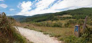 Camino de Santiago lg