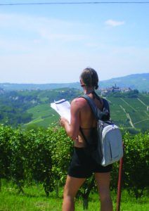 Vineyards of Barolo Walk