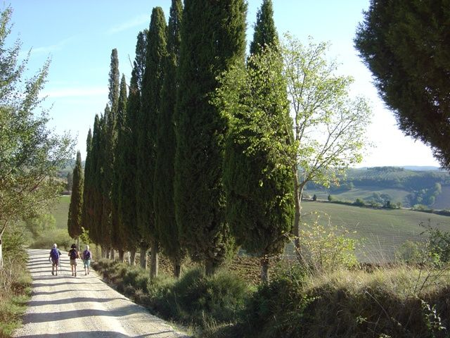 Self guided walking in Tuscany