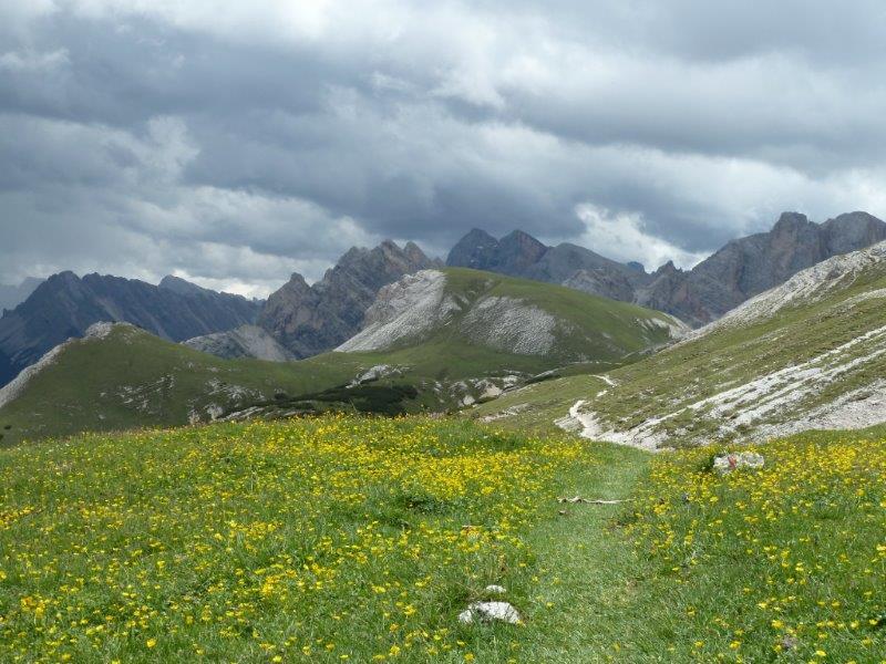 Path leading to the Col Bocia