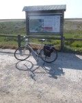 Discovering_the_Ebro_Delta_by_bike