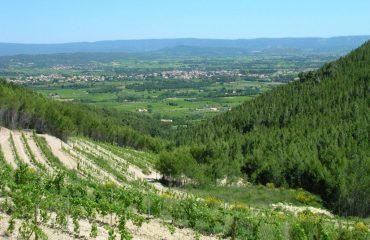 000144_france_provence_Vast-countryside-vie-g.jpg