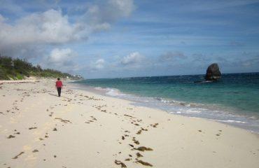 0001ff_bermuda_Beach-front-g.jpg