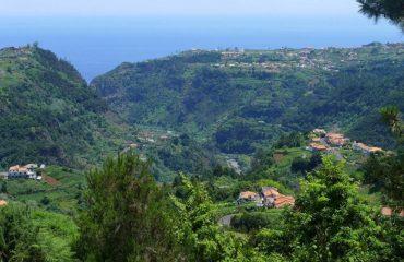 00035a_portugal_madeira_The-verdant,-lush-la-g.jpg