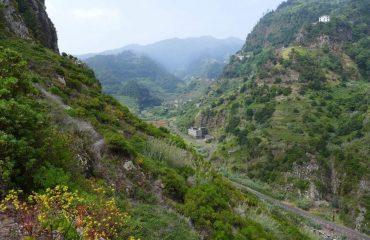 00035d_portugal_madeira_Madeira---lush-valle-g.jpg