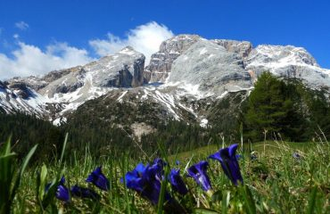 00038d_italy_dolomites_View-of-Dolomites-in-g.jpg