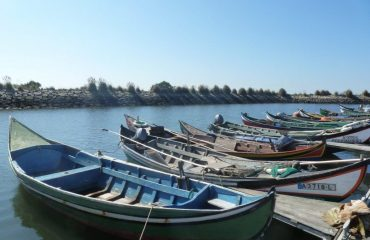 00041d_portugal_Fishing-boats-in-Wes-g.jpg