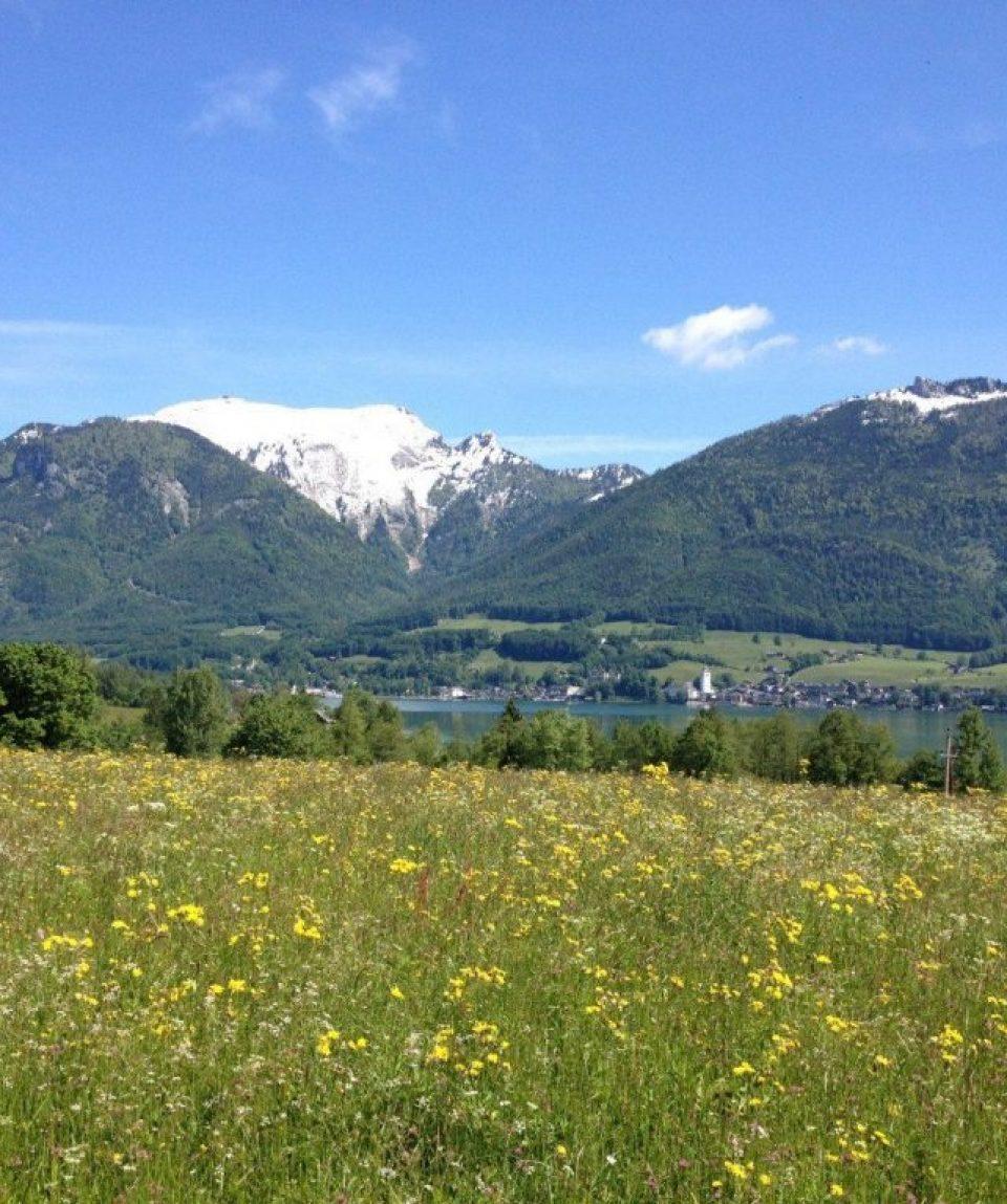 000427_austria_salzburg_Summit-of-the-Schafb-g.jpg