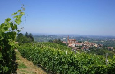 0004f4_italy_piedmont_vineyards-and-villag-g.jpg