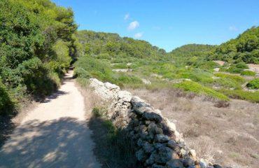 000581_spain_menorca_Pathway-alongside-fi-g.jpg