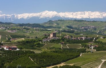 0005f5_italy_piedmont_the-langhe-hills-wit-g.jpg