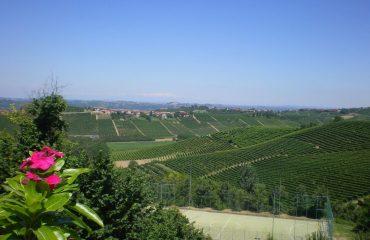 0005f6_italy_piedmont_langhe-hills-with-fl-g.jpg