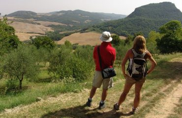 000665_italy_chianti_walkers-looking-at-v-g.jpg