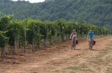 000669_italy_chianti_cycling-past-vineyar-g.jpg