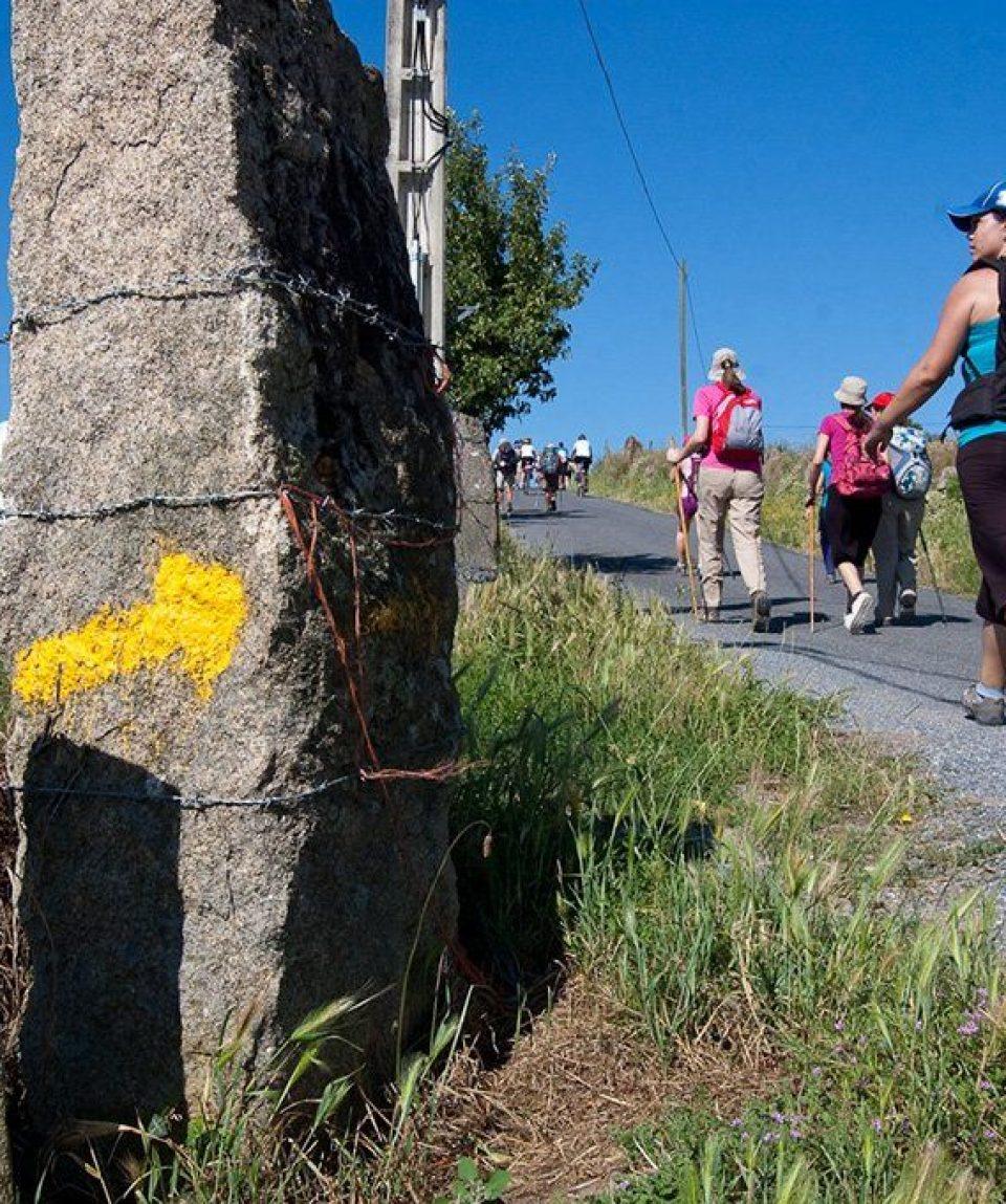 000684_spain_catalunya_Walking-the-Camino-d-g.jpg