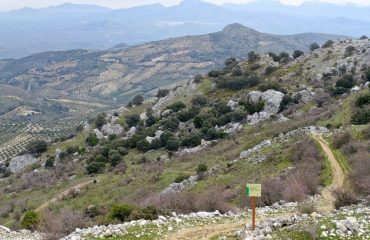 0007b6_spain_andalucia_Zagrilla-walk-g.jpg