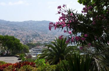 000944_portugal_madeira_View-of-Funchal-g.jpg