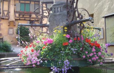 000a7b_france_alsace_Fountain-in-Riquewih-g.jpg