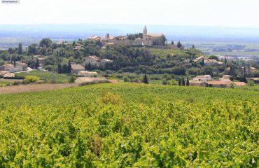 000eb1_france_provence_Cairanne-g.jpg
