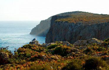 portugal/algarve/001108/Coastal-area-near-Sa-g.jpg