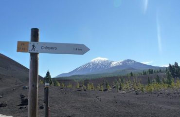 spain/canaries/001a35/Historic-Volcanoes-w-g.jpg