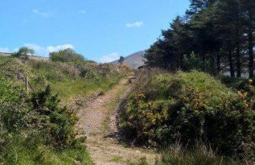 ireland/any/0016e8/Kerry-Way-g.jpg