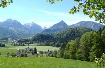 austria/salzburg/0011c0/Pretty-meadow-and-mo-g.jpg