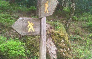 ireland/any/0016d4/Walking-path-marker-g.jpg