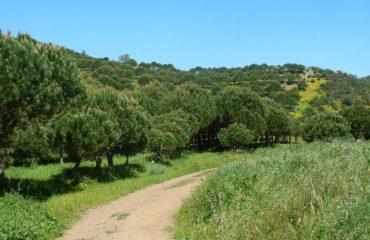 portugal/algarve/000fab/Walking-trails-of-th-g.jpg