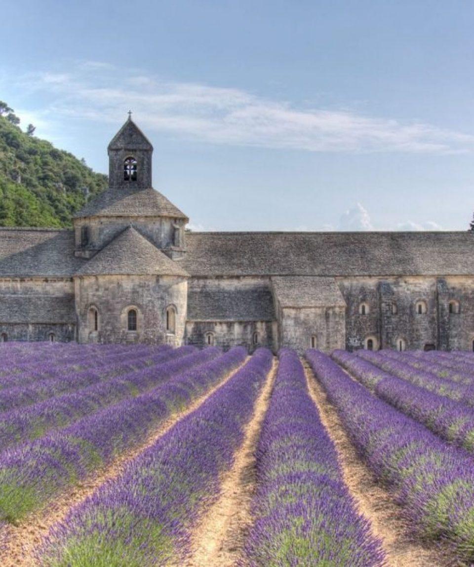 000e97_france_provence_abbaye-de-senanque-c06pl.jpg