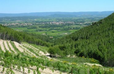 c06pv_france_provence_vast-countryside-.jpg