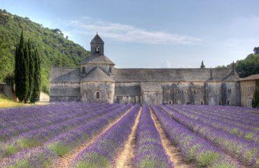 000e97_france_provence_Abbaye-de-Senanque-g.jpg