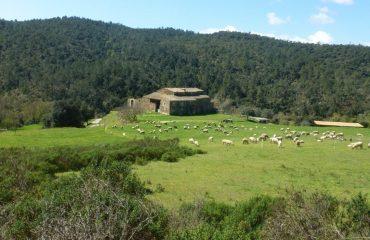 000123_spain_catalunya_Fields-in-Girona-hol-g.jpg
