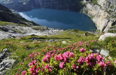 000485_switzerland_bernese-oberland-ski_Lake-view-in-Oeschin-g.jpg