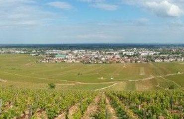 000933_france_burgundy_Vineyards-around-Bea-g.jpg