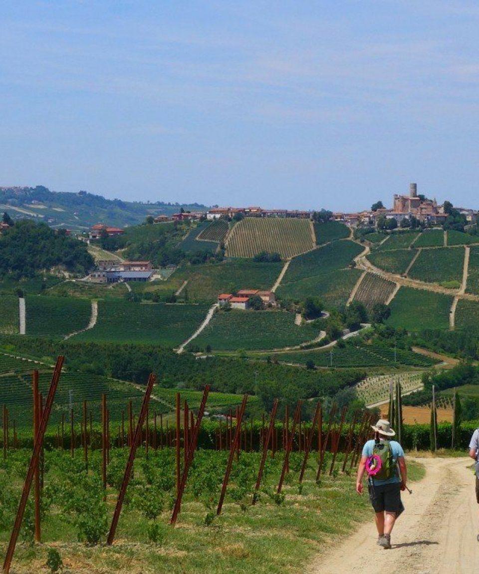 italy/piedmont/001752/Walking-in-Piedmont-g.jpg