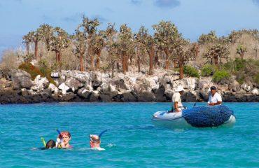 snorkelling-azure-bay-giant-cactus-santa-fe-galapagos.jpg