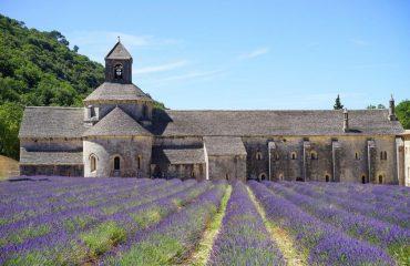 france/provence/001bb5/Abbaye-De-Snanque--g.jpg