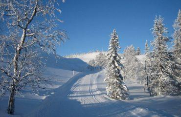finland/finland-ski/001c1d/Miles-of-prepared-tr-g.jpg