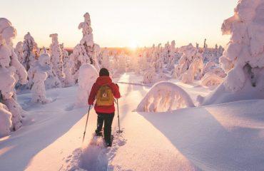 finland/finland-ski/001c1f/Snowshoeing-through--g.jpg