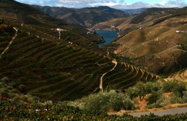 lrc_-_douro_valley_2_0.jpg