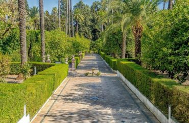 spain/andalucia/001c65/Gardens-Seville-g.jpg