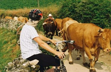 spain/any/001e4d/Cyclist-and-cows-on--g.jpg