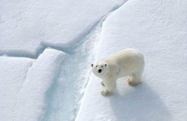 quark_expeditions_four_arctic_islands_dscf0713_4c_quarkexpeditions.jpg