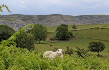 britain/wales/00238e/Clywdian-range-view-g.jpg