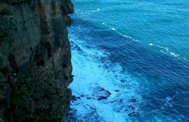 nhw_-_dunnet_head_cliffs_looking_east.jpg